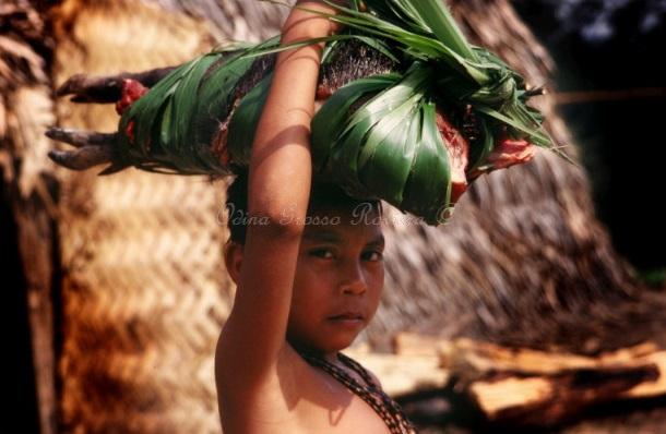 1999 Brasile Matis